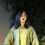 XIIème Semaine de Théâtre Antique de Vaison-la-Romaine : L'Orestie, Agamemnon